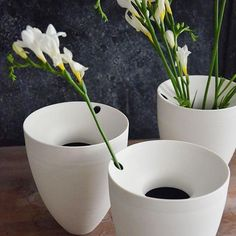 #Repost @pottedben ・・・ The freesias I bought for a market last weekend are still going strong. The smaller opening in the Orbit vases works perfectly for a single stem. I really like the elegant lean it imparts. . . . #porcelain #ceramics #potter #maker #handmade #design #eastlondon #white #interiors #minimal #vase #bowl #instastyle #nofilter #craft #clay #keramik #hackney #CRemerging #handmadeintheeveryday