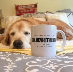This Golden Retriever knows the struggle. This mug is available in store for $14.94 at www.mypupboutique.com Photo credit to Instagram @kebelclark #GoldenRetriever #GoldenRetrieverMug