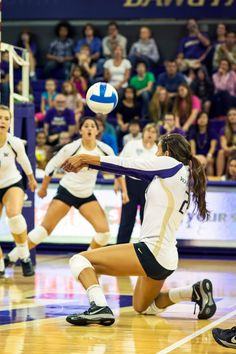 Good Stance Or Player Sports Photography Volleyball Photography Professional Volleyball