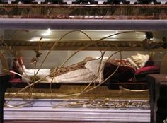 """Creepy, but I love this incorruptibles saint stuff.  This is the """"incorrupt"""" body of Pope John XXIII who died in 1963."""