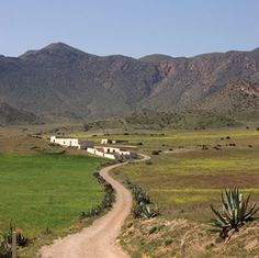 Comprehensive guide to walking routes in the almeria province Andalucia Spain, Andalusia, Granada, Walking Routes, Spain Holidays, Natural Park, Seville, Spain Travel, Malaga