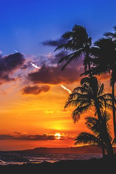 this is real close to Our view in my dreams when We are at the Pink Beach island Beautiful Sunset, Beautiful Beaches, Palm Tree Sunset, Palm Trees, Amazing Sunsets, Sunset Photos, Beach Scenes, Tahiti, Photos Du
