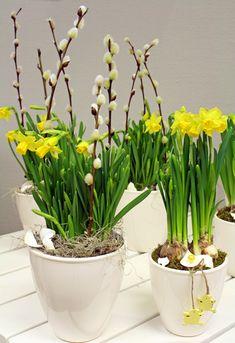 holmsunds blommor Vibeke Design, Spring Plants, Palm Sunday, Family Events, Winter Garden, Silk Flowers, Container Gardening, Flower Arrangements, Planter Pots