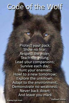 Code of the wolf.some of the reasons for my wolf tattoo Life Quotes Love, Great Quotes, Quotes To Live By, Me Quotes, Motivational Quotes, Inspirational Quotes, Funny Quotes, Respect Quotes, Wolf Love