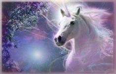 Unicorns - Unicorn and Pegasus gallery - Pegasus - Unicorn World