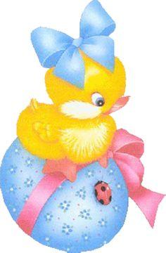 POLLITO Chick