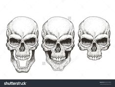 One skull in different guises. Hand drawn vector illustration for prints design