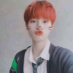 Wsdwedwfrvrtg that filter is too cute on himmmmm Close Up, Wattpad, Fandom, Kim Dong, Lee Daehwi, Kpop, Produce 101, Love You Forever, Korean Music