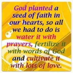 God planted a seed of faith in our hearts, so all we had to do is water it with prayers, fertilize it with words of God and cultivate it with lots of love..............