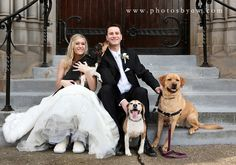 Pittsburgh winter wedding - bride and groom with dogs - ©Copyright 2016 Photography by Amanda Wilson