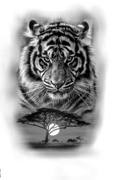 Tiger Tattoo Tiger Drawing Black and White Drawing # Drawing # Tiger Tiger . - Tiger Tattoo Tiger Drawing Black and White Drawing tiger … – - Shark Tattoos, Kitty Tattoos, Animal Tattoos, Cool Tattoos, Tiger Tattoo Design, Cat Tattoo Designs, Tiger Design, Tiger Drawing, Tiger Art