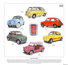 CLASSIC FIAT 500 & 600 Fine Art Print - includes 595 Abarth Nuova Multipla Jolly #Art