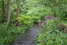 Prachtige tuin!!!