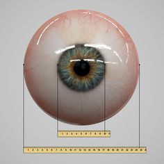 3d model eye realistic human realtime