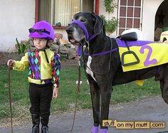 A jockey and  his horse haha