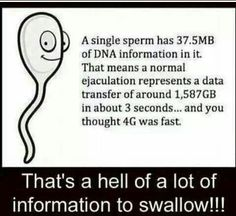 Are You Serious?That's a hell of a lot of information to swallow! Lab Humor, Geek Humor, Are You Serious, Solution, Adult Humor, Just For Laughs, Laugh Out Loud, The Funny, Thinking Of You