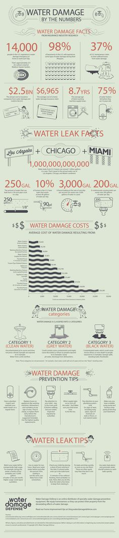 Infographic - Water Damage facts from insurance industry research.
