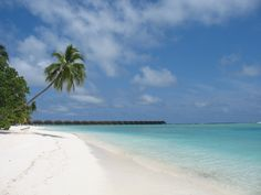 Meeru Maldives Visit Maldives, Maldives Travel, Maldives Trip, Maldives Islands, Island Resort, Ultimate Travel, Running Away, Resort Spa, Snorkeling