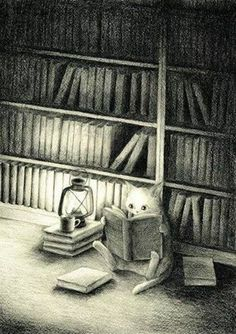 Illustration: Cat seated on library floor reading books by lantern light. I Love Books, Good Books, Books To Read, I Love Cats, Crazy Cats, Book Illustration, Illustrations, Cat Reading, Reading Books