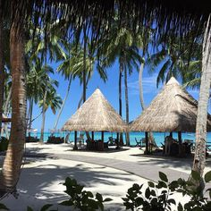 Found a nice shade pocket to eat my Nutella crepe #Maldives #shangrilamaldives