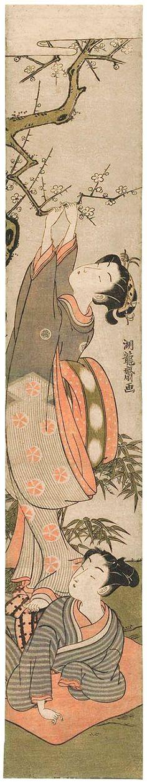 Koryusai Isoda / Frau pflückt Pflaumenblütenzweig