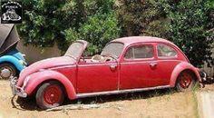 Franken-wagen or VW rendition of Hollywood movie star limousine? Weird Cars, Cool Cars, Carros Vw, Kdf Wagen, Automobile, Vw Vintage, Vintage Trucks, Abandoned Cars, Abandoned Vehicles