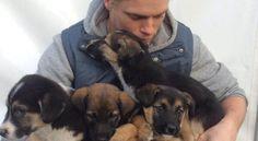 Atleta olimpico adotta cani di Sochi