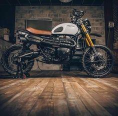 Triumph Scrambler, Scrambler Motorcycle, Bobber, British Motorcycles, Cafe Racer Bikes, Weird Cars, Custom Bikes, Vespa, Sport Cars