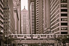 Office towers along Chicago's LaSalle Street urban canyon