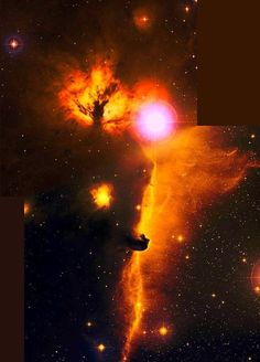 Hubble Images The Horsehead Nebula, deep within the gigantic Orion Nebulae. Horsehead Nebula, Orion Nebula, Cosmos, Hubble Space Telescope, Space And Astronomy, Nasa Photos, Hubble Images, Carl Sagan, To Infinity And Beyond