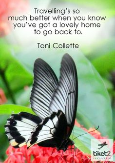 Travelling is so much better when you know you've got a lovely home to go back to Quotes Travel Posters, Travel Quotes, Quotable Quotes, Me Quotes, Stylist Quotes, Butterfly Quotes, Wanderlust Quotes, When You Know, Personal Stylist