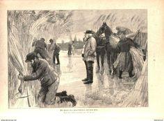 Bücher, Zeitschriften, Comics - Die Ernte des Havelschiffes auf dem Eise (W.Pape) /Druck , entnommen aus Zeitschrift/1896