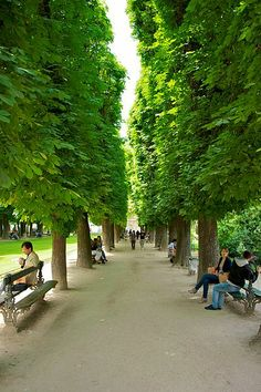Jardin du Luxembourg, Paris, France why oh why can't I be there...