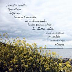 #runo #runokuva #runous #runoilija #suomeksi #valokuva #valokuvaus #minuus