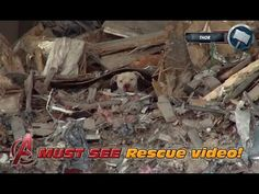 Los Angeles River Rescue of a scared German Shepherd (Adrienne). Please Share. - YouTube
