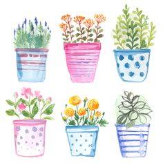 Find Set Flowers Pot Watercolor Vector stock images in HD and millions of other royalty-free stock photos, illustrations and vectors in the Shutterstock collection. Watercolor Art Lessons, Watercolor Cards, Watercolor Illustration, Watercolour Painting, Watercolor Flowers, Painting & Drawing, Flower Doodles, Floral Illustrations, Doodle Art