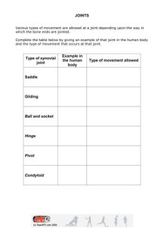 Human Body Interactions - Mrs. O | Earth Science | Pinterest ...