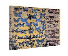 Impression sur toile MOTH COLORS I bois, multicolore - 45*30