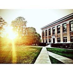 Sunburst through the trees between Carnegie and Cole Hall. By Jack Hellie, Drake Photo Bureau. #DrakePOTD