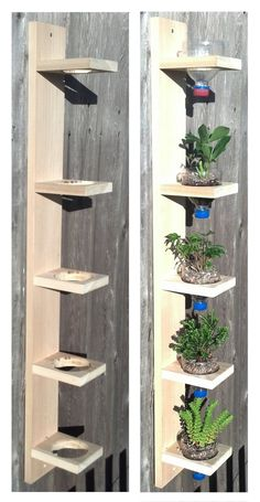 stenlagd rabatt Hanging drip garden bySolidWoodWorks on Etsy Hanging drip garden bySolidWoodWorks on Etsy Wooden Garden Ornaments, Wooden Planters, House Plants Decor, Plant Decor, Easy Woodworking Projects, Diy Wood Projects, Shoe Rack Organization, Hanging Plants, Diy Bedroom Decor