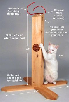 cat scratching post breakdown with measurements