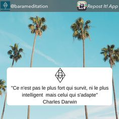 It is not the stronger of the species that survives but the most adaptable - Charles Darwin merci le @barameditation  #mindfulness #pleineconscience #adaptation #antifragile #evolution #evolve #mindful #mindfulness #meditate #meditation #meditation #charlesdarwin #accomplishment