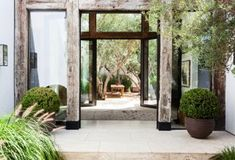 A grand entrance lined with California grasses.