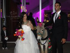 Pasky and Maurice with Meeha the Beer Donkey!!!! So adorable!!!