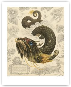Raoul Deleo » Fairytales: The Dragon.