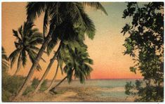 Vintage postcard - imagining myself swaying in a hammock... very large local rum & cola in hand...