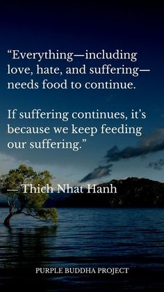 18 Quotes on Buddhism From Thich Nhat Hanh of the Week – Purple Buddha Quotes Source by Buddhist Quotes, Spiritual Quotes, Wisdom Quotes, Positive Quotes, Life Quotes, Spiritual Awakening, Taoism Quotes, Buddha Quotes Life, Buddhist Wisdom