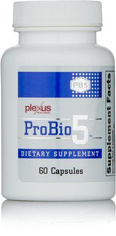 Plexus ProBio 5 for a Healthy Gut - Plexus Worldwide