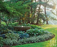 Create a beautiful, low-maintenance shade garden that's full of texture from spring to fall.