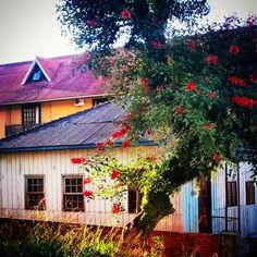 #cottage #casas #casadecampo #casasdaserra #naturelovers #spring . Passo Fundo . RS . Brasil . by luizanacul